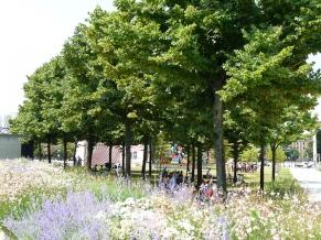 parc de la Villette, Paris 19ème (75), juillet 2013
