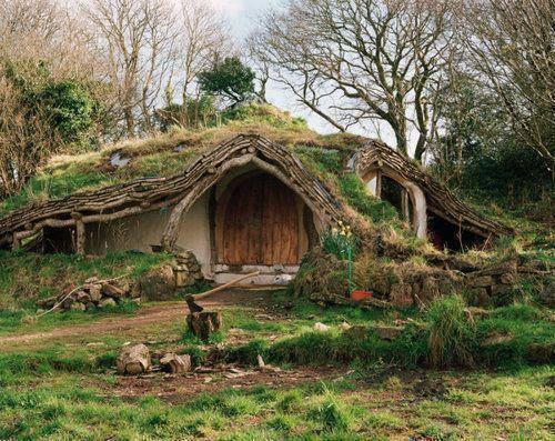 Histoires de druides…